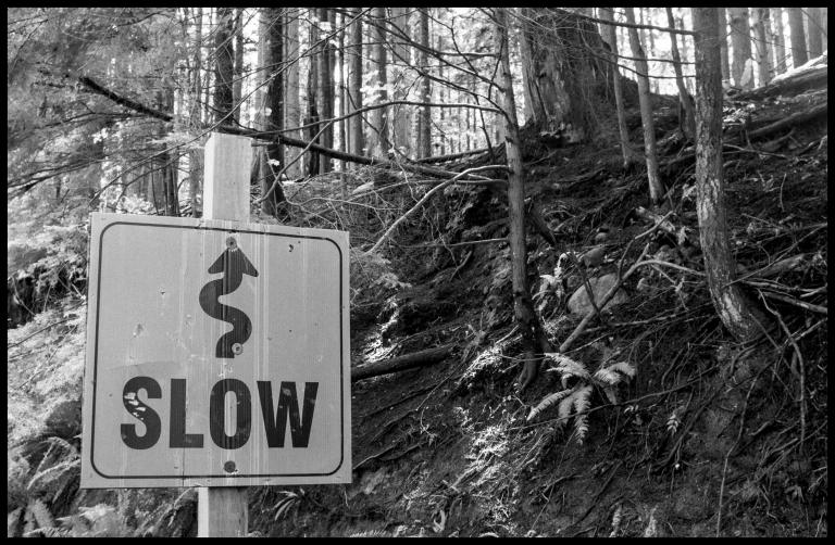 slow b&w
