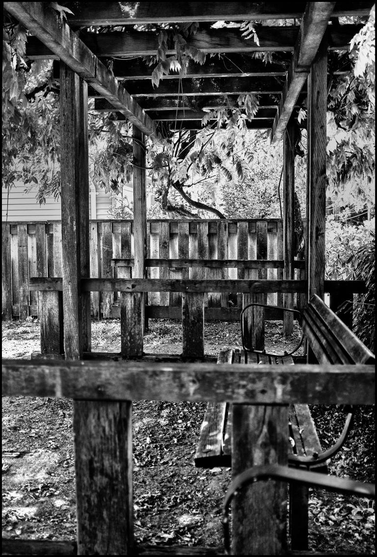 wisteria frame