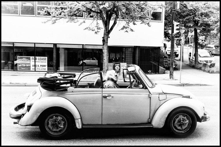 hippie & Bug